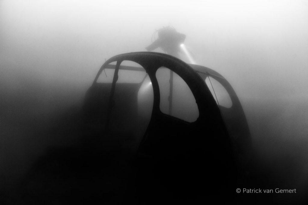 De eend, bronsbergen. © Patrick van Gemert